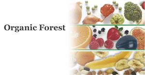 Organic Forest(オーガニックフォレスト)